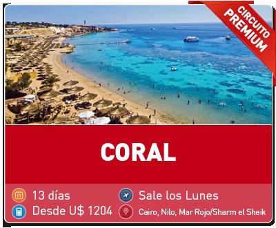 Tour Coral