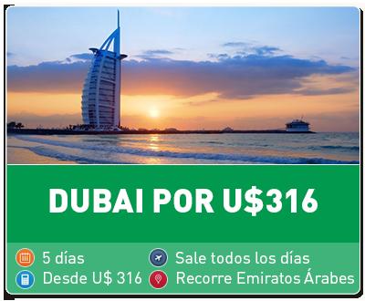Tour Dubai por 316