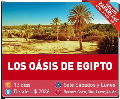 Tour Los oasis de Egipto