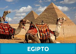 Tours por Egipto